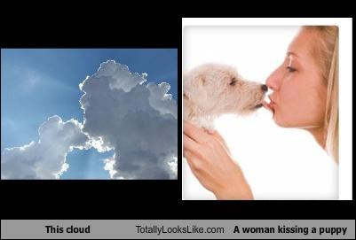 cloud,dogs,kissing,woman