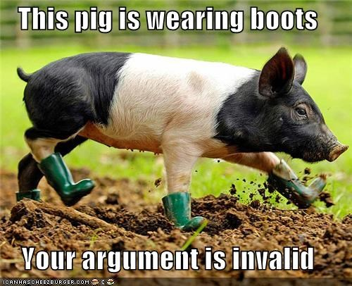 argument,boots,caption,captioned,invalid,pig,wearing