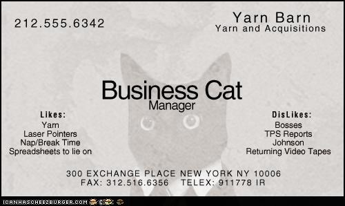best of the week Business Cat cheezburger confidential story work - 5042271744