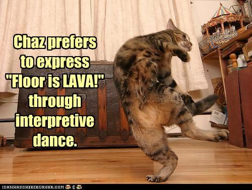 caption captioned cat dance dancing expression floor lava preference - 5042807552