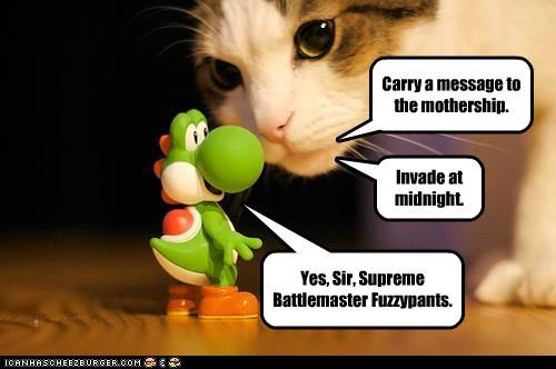 Carry a message to the mothership. Invade at midnight. Yes, Sir, Supreme Battlemaster Fuzzypants.
