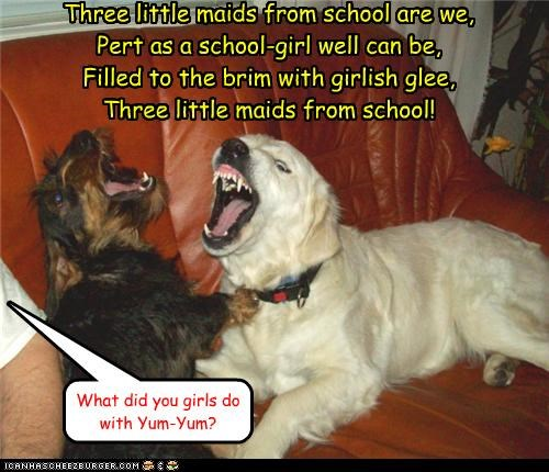 animals distraction dogs gilbert and sullivan guilty i has a hotdog singing Songs three little maids - 5043029504