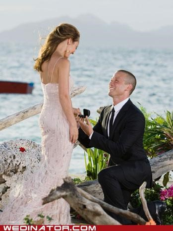 ABC,ashley,celeb,deanna,funny wedding photos,ian,jennifer,jillian,jp,meredith,proposal,ryan,television,the bachelorette,trista,TV