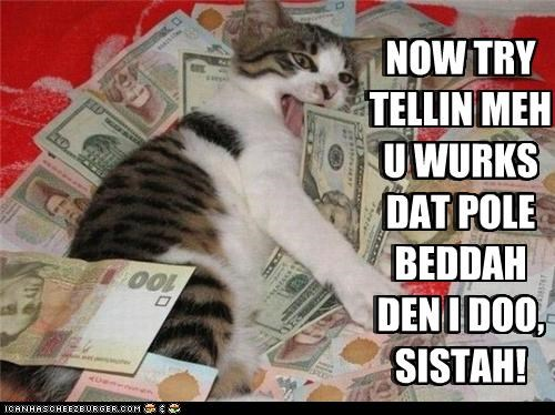 animals,cash,Cats,I Can Has Cheezburger,money,pole,strippers