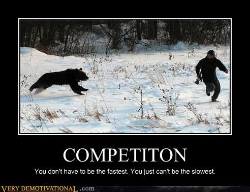 animals bear competition running Terrifying