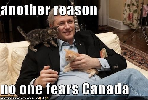 Canada Cats kittehs political pictures stephen harper