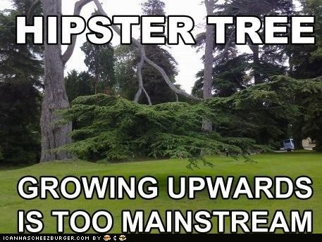 hipsters Memes too mainstream trees - 5044641792
