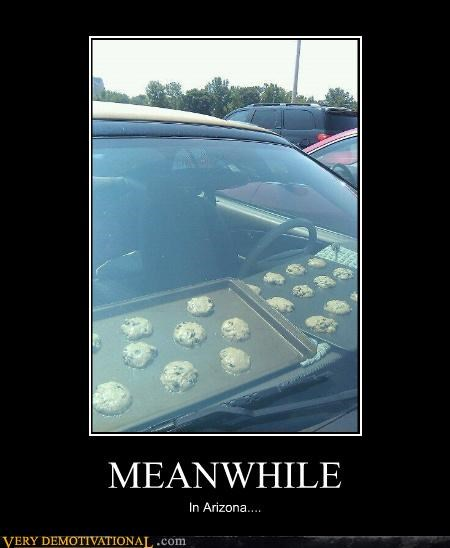arizona,car,cookies,Meanwhile,Pure Awesome
