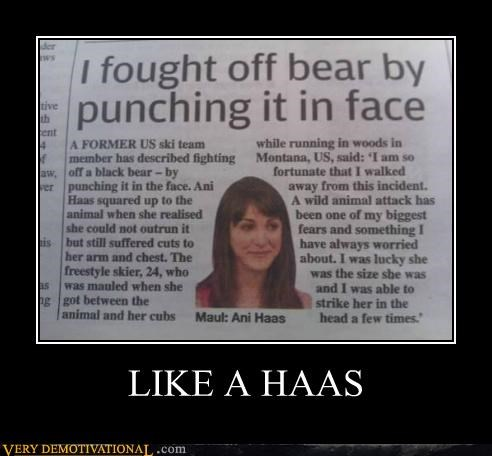 ani hass,bear,fight,Like a Boss,Pure Awesome
