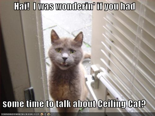 ceiling cat,doors,lolcats,religion