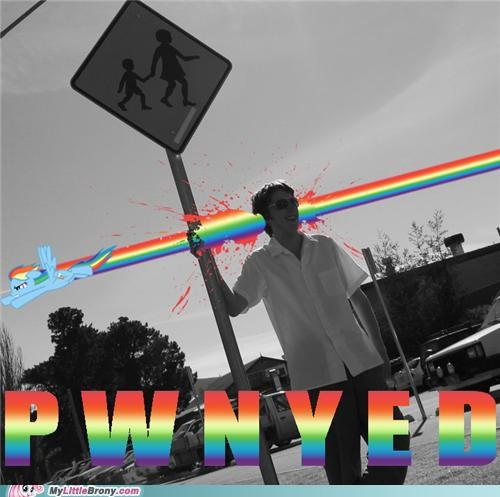 headshot IRL PWND rainbow dash - 5045478656