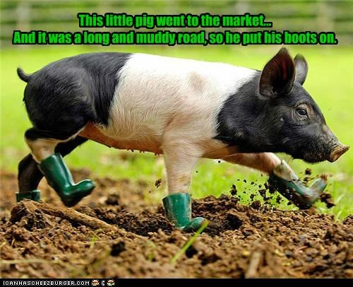This little pig went to the market... And it was a long and muddy road, so he put his boots on.