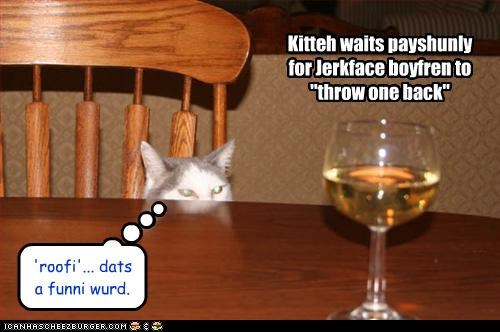 "Kitteh waits payshunly for Jerkface boyfren to ""throw one back"" 'roofi'... dats a funni wurd."