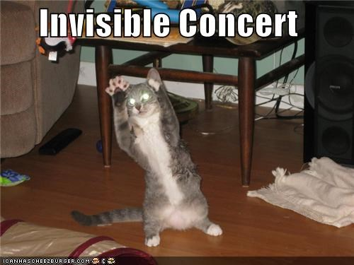 animals barack obama Cats concert hamsters I Can Has Cheezburger invisible lemonade politicians president - 5046276608