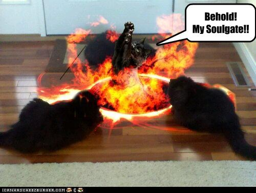 animals,basement cat,Cats,fire,hell,I Can Has Cheezburger,photoshopped,soulgate,souls