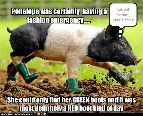 Penelope was certainly having a fashion emergency..... She could only find her GREEN boots and it was most definitely a RED boot kind of day Luk out market, heer I comz