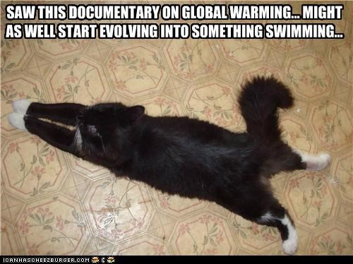 caption captioned cat documentary evolving global warming saw something starting swim swimming