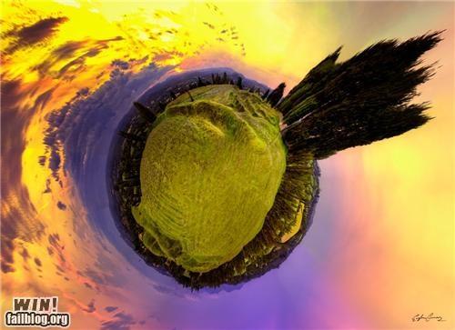 fish-eye lens,photography,whoooah