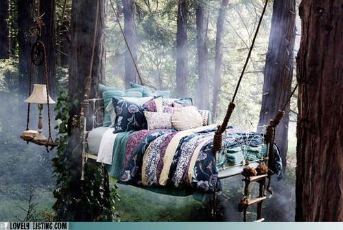 bed,canopy,Forest,trees