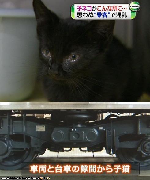adventure danger news oh noez rescue tokyo trains - 5047461632