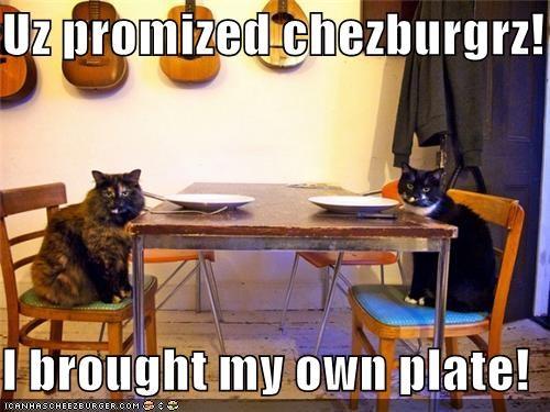 Cheezburger Image 5047842304