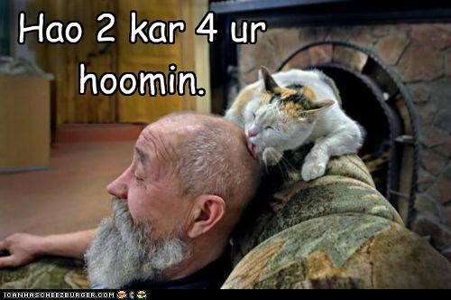 caption captioned care caring cat head How To human licking - 5047923200