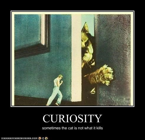 CURIOSITY sometimes the cat is not what it kills