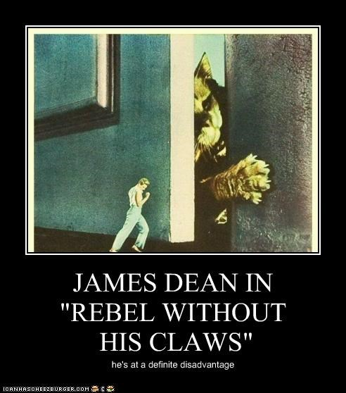 """JAMES DEAN IN """"REBEL WITHOUT HIS CLAWS"""" he's at a definite disadvantage"""