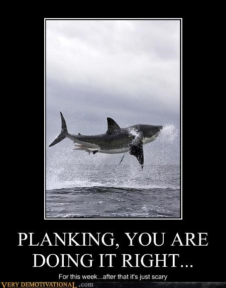 PLANKING, YOU ARE DOING IT RIGHT... For this week...after that it's just scary