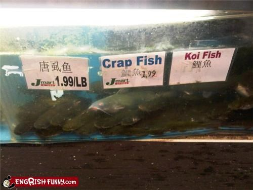 Crap Fish For Sale