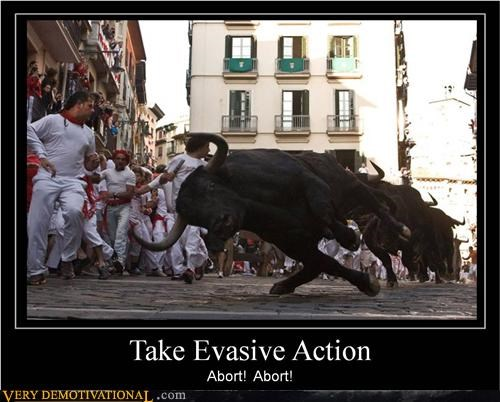 bull fighting,evasive action,scary,Terrifying