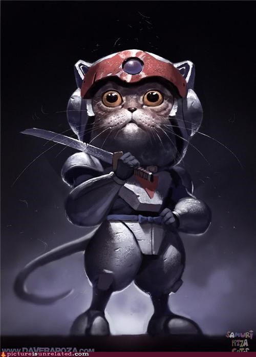 art cat pizza samurai wtf - 5050003200