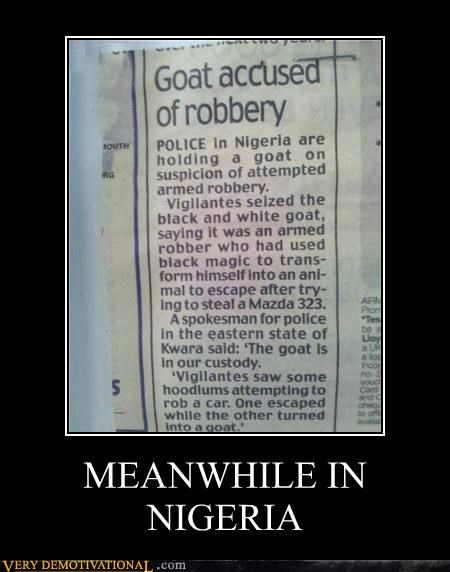 goat hilarious Meanwhile nigeria robbery - 5050035968