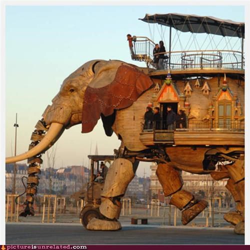 crazy,elephant,invention,wtf