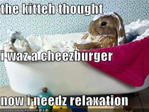 Cheezburger Image 5050389248
