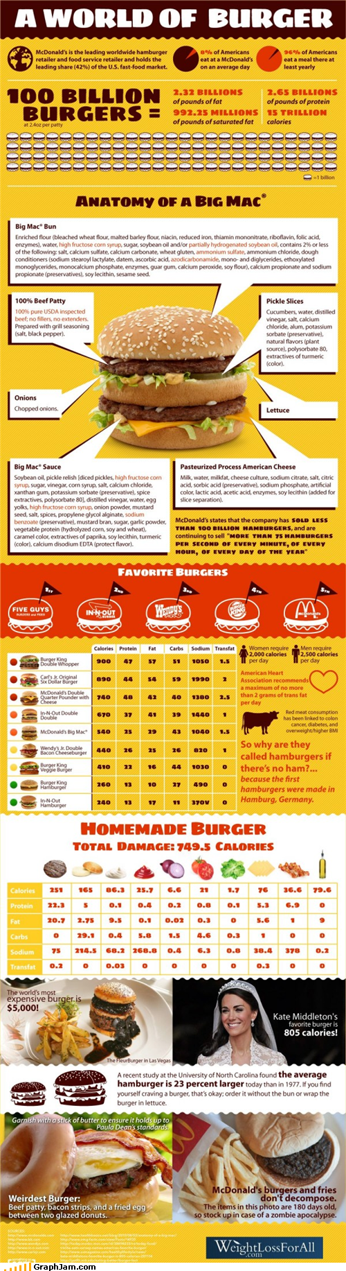 burgers calories gross hamburgers infographic ingredients - 5050499584
