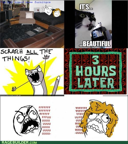 all the things cat furniture Rage Comics scratch - 5050565120