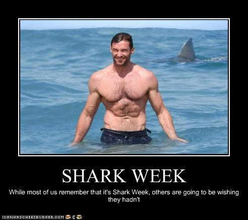 SHARK WEEK While most of us remember that it's Shark Week, others are going to be wishing they hadn't