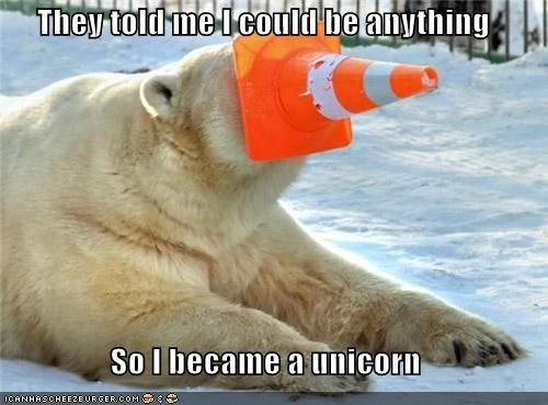 cones,I Can Has Cheezburger,orange cone,polar bears,they told me,unicorns