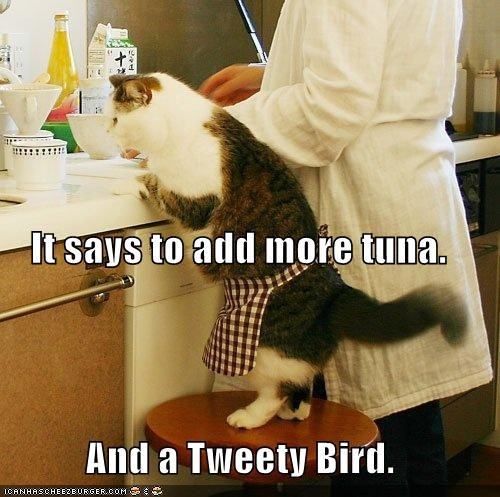 add,and,apron,bird,caption,captioned,cat,cooking,human,more,recipe,says,tuna,tweetie bird