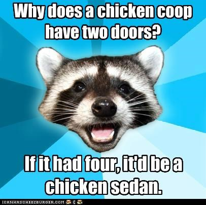 animemes,chicken,coop,doors,Lame Pun Coon,sedan