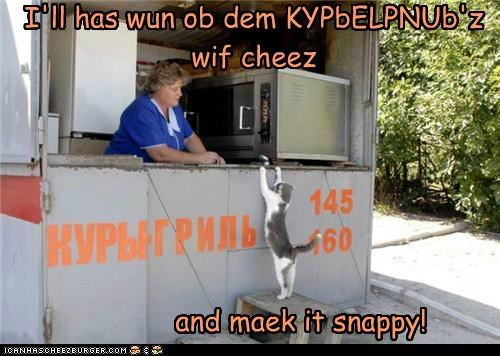 I'll has wun ob dem KYPbELPNUb'z wif cheez