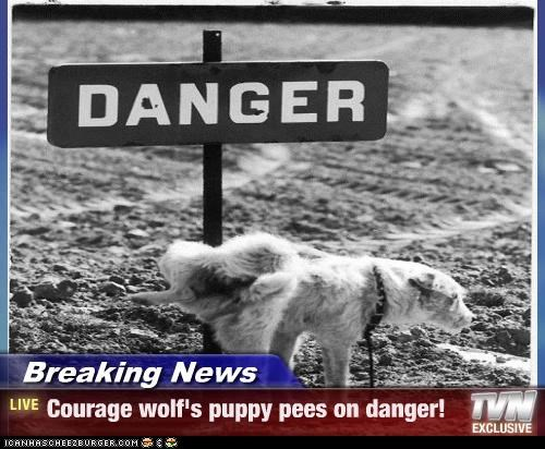 black and white,black and white photograph,Courage Wolf,courage-wolfs-puppy,danger,pee,peeing
