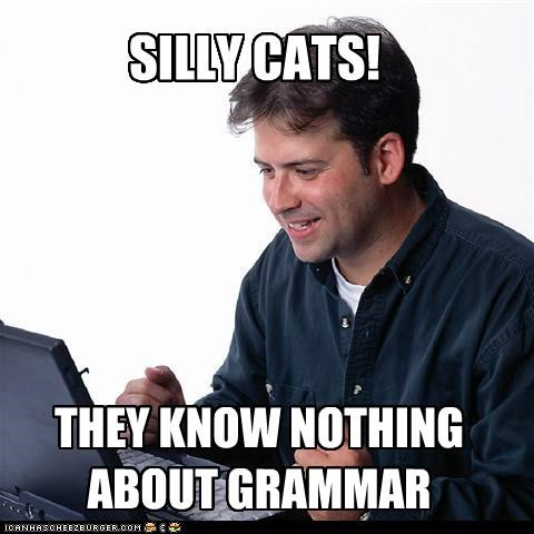 Cats grammar lol Net Noob silly