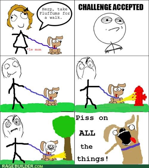 all the things Challenge Accepted cute dogs pee piss Rage Comics - 5054932736