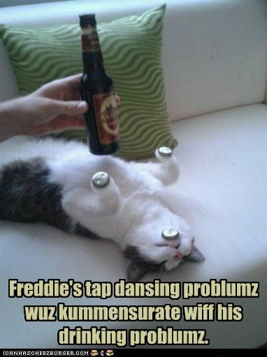 caption,captioned,cat,commensurate,drinking,passed out,problem,problems,tap dancing