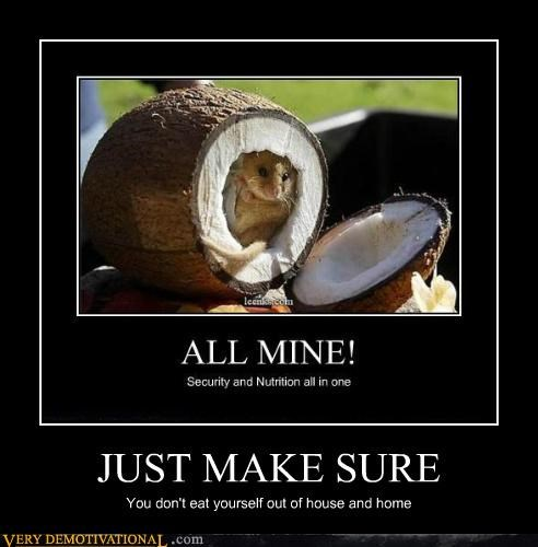 coconut hilarious just make sure mouse - 5055651072