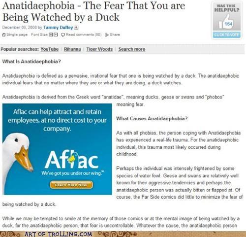 Ad best of week duck phobia - 5056112896
