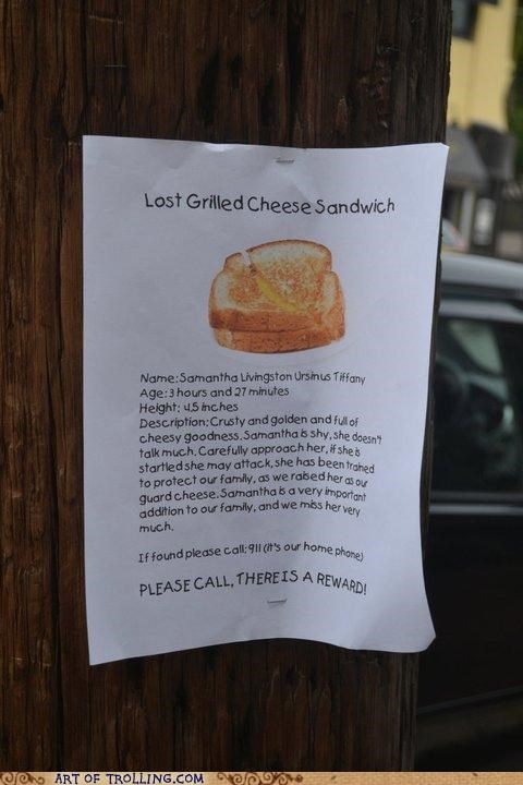 lost dog,grilled cheese,grilled cheese sandwich