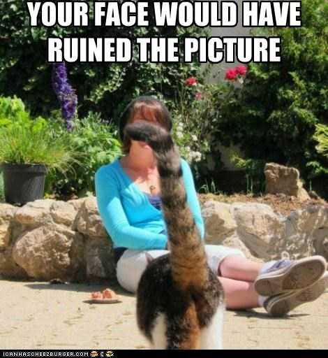 caption captioned cat face photobomb picture prevention ruin your - 5056796672
